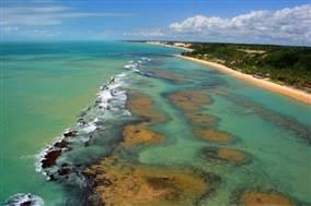 Melhores Aeroportos Devem Impulsionar o Turismo na Costa das Baleias